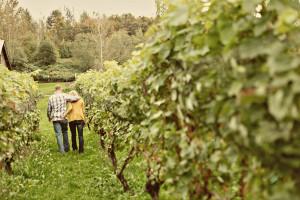 couple-walking-away-vineyard